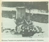 Могила Гашека на деревенском кладбище в Липнице